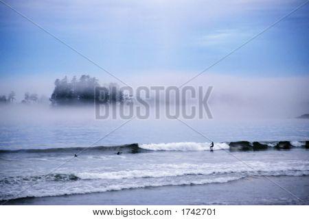 Tofino Surfers