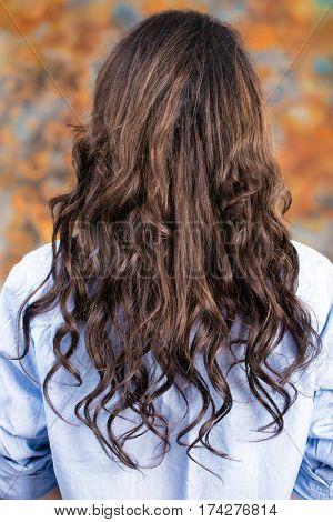 Female Long wavy brunette hair, rear view, indoor beauty salon