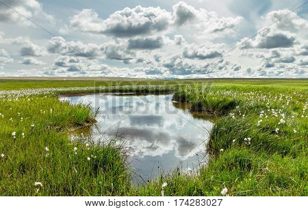Open grassland and clouds with reflections in water. Beautiful landscape with green grass field, pond and bright sky with clouds reflected in water in spring or summer. Colorful nature background. Green meadow. Iceland.