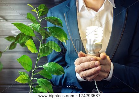 Man Holding A Glowing Light Near The Green Sprout Tree