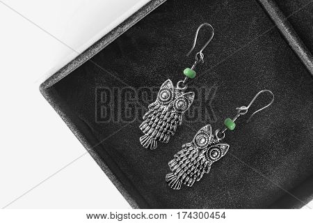 Silver earrings in the form of owls in black jewel box closeup