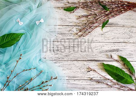A bunch of pussy-willow branches on a white wooden backgruond decorated with tiffany blue colored drapery. Springtime background.