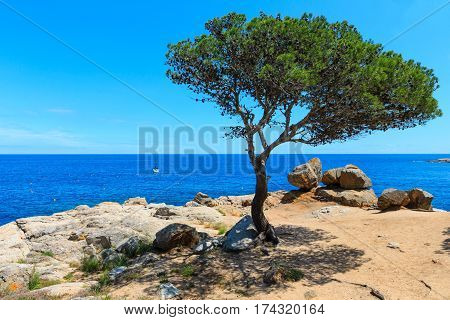 Costa Brava Summer Scenery, Spain.