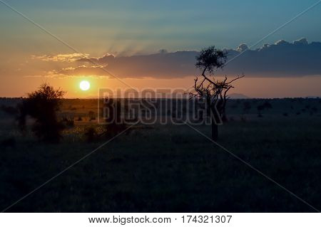 Sunset over the savanna of Tsavo West Park in Kenya