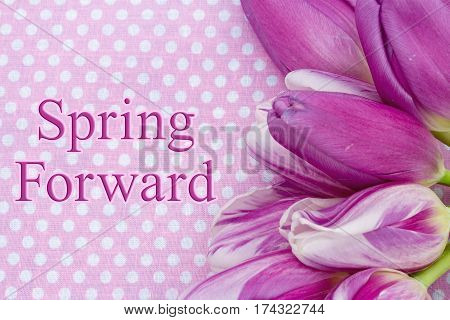 Spring Forward message A bouquet of purple tulips on pink polka dots with text Spring Forward