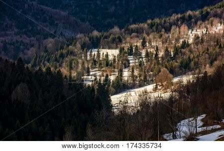 Last Days Of Winter In Forest Landscape