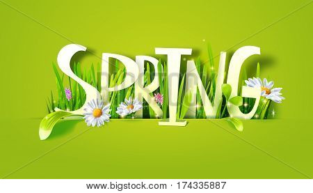 Spring word lettering. Letters made with camomile flowers and green grass on white background. Floral banner. Vector illustration