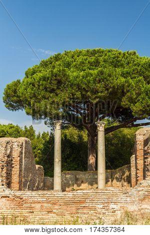 Roman pillars at Ostia Antica roman city. Stone pine or Pinus pinea tree in background Rome in Italy.