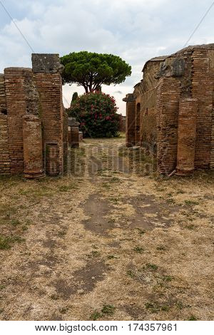 Roman Path And Buildings At Ostia Antica Italy With Stone Pine Or Pinus Pinea.