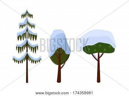 Tree evergreen trees covered with snow on white. Collection of different trees in shape and size. Long spruce bare Christmas tree in cartoon style. Winter snow frost in flat design vector illustration