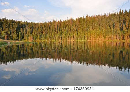 Autumn forest mountain lake reflection in Russia