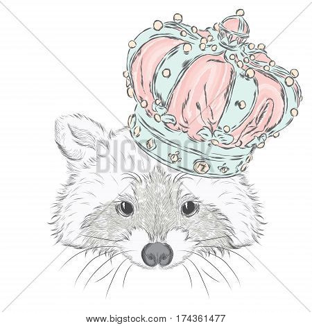 Raccoon in the crown . Vector illustration.