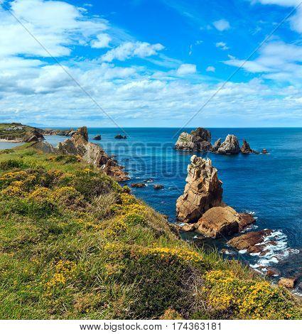 Blossoming Atlantic Ocean Coastline.