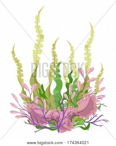 Sea Plants And Aquatic Marine Algae Seaweed Set Vector Illustration. Yellow And Brown, Red And Green