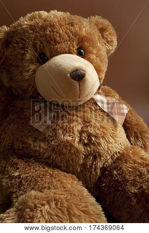 forgotten alone teddy bear portrait loneliness abandoned