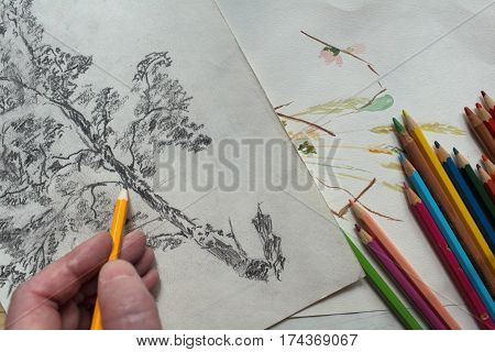 hand Artist drawing Creative wooden pencil on paper