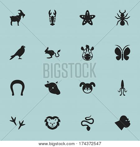 Set Of 16 Editable Nature Icons. Includes Symbols Such As Chimpanzee, Bedbug, Puppy And More. Can Be Used For Web, Mobile, UI And Infographic Design.