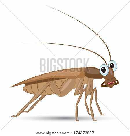 funny cartoon cockroach with kind eyes with shadow on white background. Vector illustration