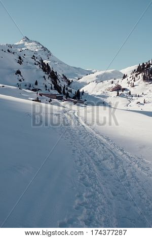 ski touring near bamberger hutte in the austrian alps