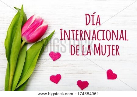 Women's day card with Spanish words 'Día International de la Mujer'.Tulip flower and small heart on white wooden background