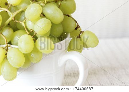 horizontal image of organic green grapes in a white cup on one side of the image with white background and room for text.