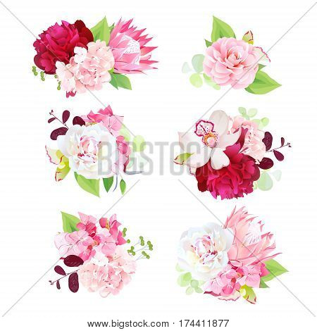 Mini spring mixed bouquets of pink hydrangea, protea flowers, white and burgundy red peonies, camellia, orchid and bright green plants vector design set. All elements are isolated and editable.
