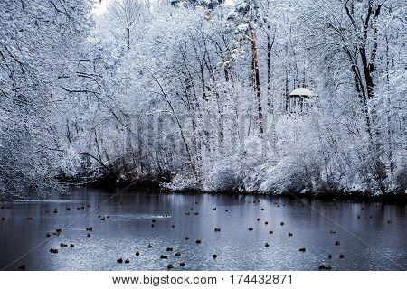 Winter Gazebo In The Park Alexandria. Bila Tserkva.
