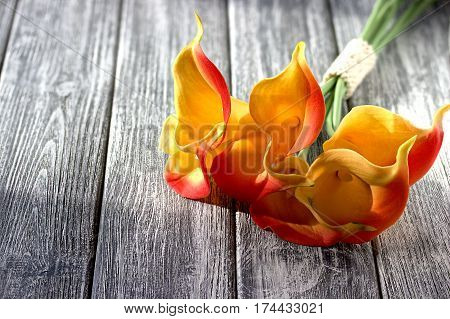 Orange Yellow Calla Lilies On Gray Wooden Background.