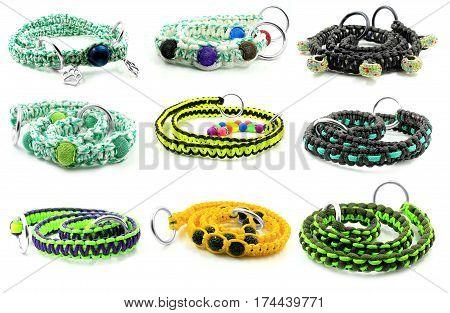 Dog Collar Collection