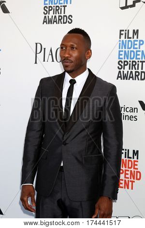 LOS ANGELES - FEB 25:  Mahershala Ali at the 32nd Annual Film Independent Spirit Awards at Beach on February 25, 2017 in Santa Monica, CA