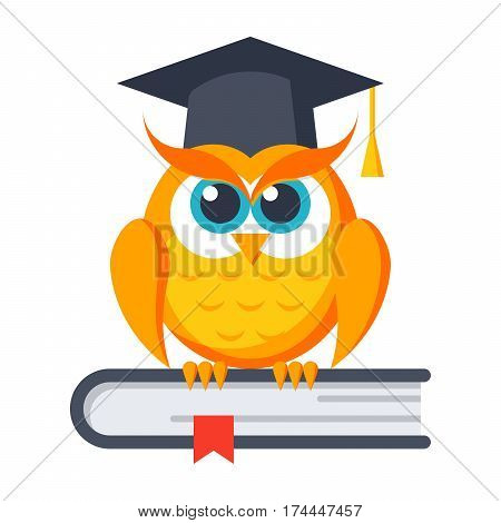 Education concept with owl in graduation cap