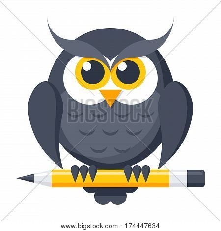 Education concept, owl with pencil, vector illustration in flat style
