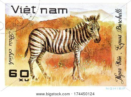 VIETNAM - CIRCA 2017: A Stamp printed in Vietnam shows zebra Equus Burchelli series Animals circa 1981