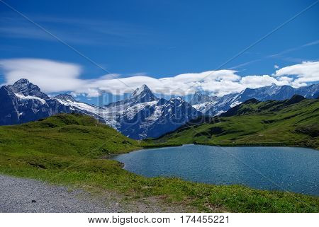 Sunny Day View To The Mountains Bachalpsee Lake. Mannlichen (jungfrau Region, Bern, Switzerland)