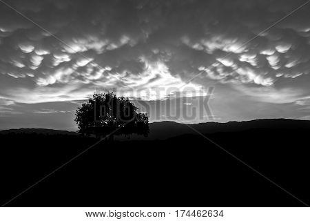 cloudscape black and white of Mammatus Clouds