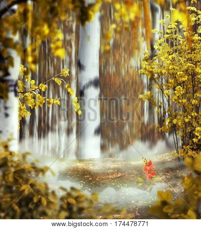 beautiful autumn mystical background photo montage with a birch grove of the middle the foggy meadow with a rose flower between a clouds and leaves in the foreground