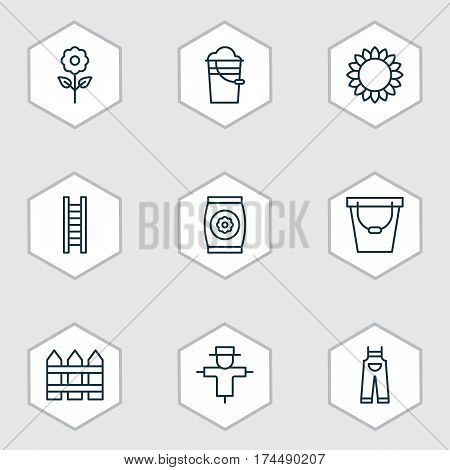 Set Of 9 Plant Icons. Includes Bugbear, Stairway, Helianthus And Other Symbols. Beautiful Design Elements.