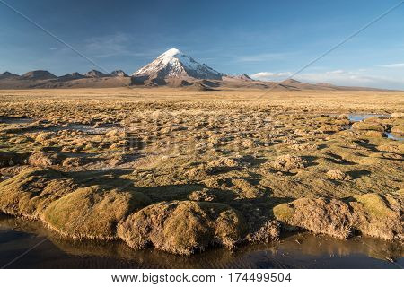 Panorama of Volcano Sajama. Nature of Altiplano Bolivia South America