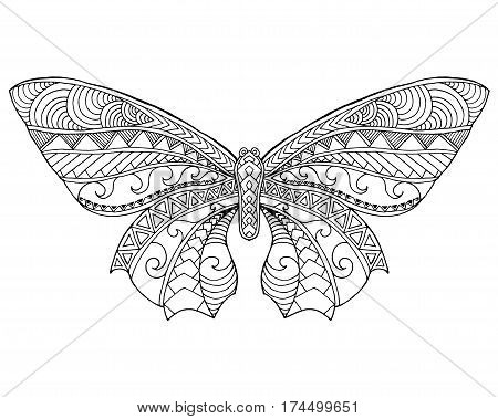 Beautiful butterfly. Black white hand drawn doodle animal. Ethnic patterned vector illustration. Sketch for coloring page decoration tattoo poster print t-shirt