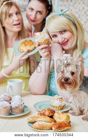 Three young women and little dog sit and eat baked sweets at table in kitchen, focus on dog.
