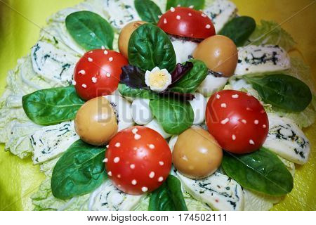 Beautiful snack dish from cheese, boiled eggs, tomatoes and greens.