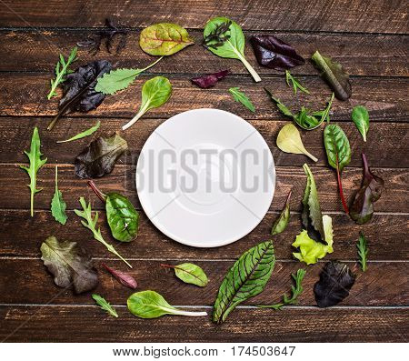 Herbs or salad mix leaves laid out around a white plate saucer with place for text salad leaves frame on rustic wooden background top view.