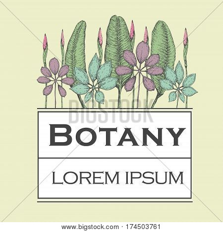 Hand drawn vector botany illustration. Vintage logo template with forest plants.