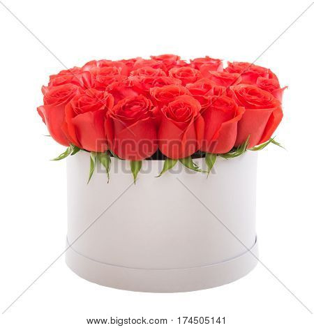 Red roses in white luxury present box. Flower box.