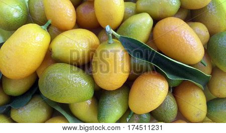 Kumquat with leaves. Kumquat background. Citrus fruits