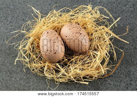 Two quail easter eggs on hay on dark background.