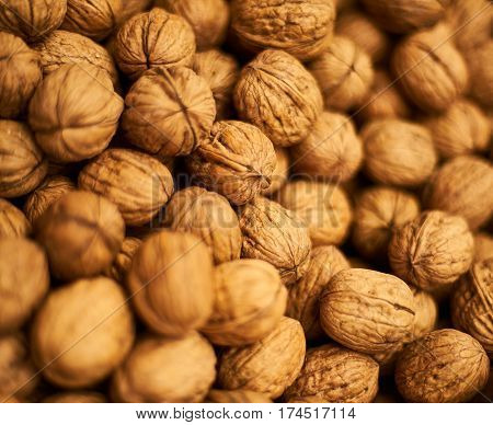 Egyptian Bazaar walnuts in shell closeup .