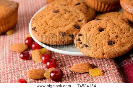 Homemade cakes. Delicious Chocolate Chip Cookies and muffins with cranberry raisins and nuts. Selective focus with shallow depth of field