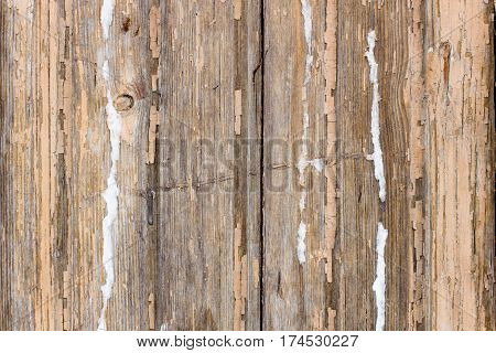 Background texture gray yellow old board in the daytime