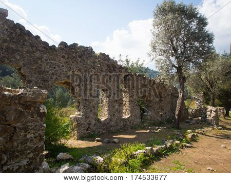 Olympos ruins archeological site in Cirali Turkey